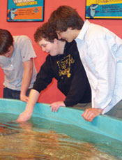 Three boys playing at Underwater Adventure
